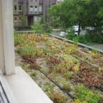 Eco-roof
