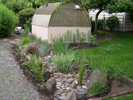 rain garden and lawn