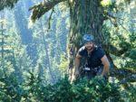 Arboriculture International